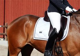 plum-equestrian-stockholm-2-1
